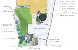 The Plan for Driveway and Landscape