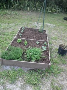The Rustic Vegetable Garden
