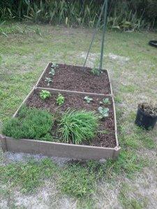 The Rustic Vegetable Garden