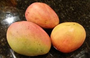 Chef Mangoes